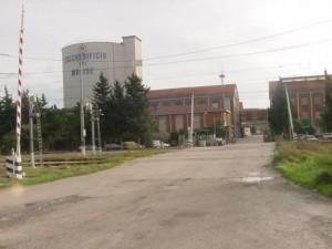 Trovato l accordo zuccherificio del molise da il via alla for Subito it molise attrezzature agricole